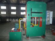 鑫城橡胶长条专用平板硫化机