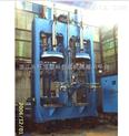 厂家长期供应双模胶囊液压硫化机