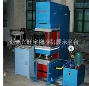 1000液压轮胎双模定型硫化机,平板硫化机, 真空硫化机