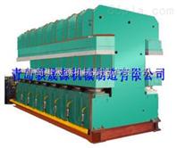 双鄂式平板硫化机